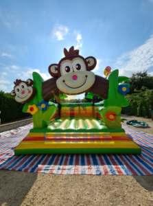 Château singe